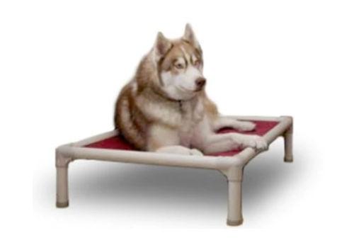 hondenbed01.jpg